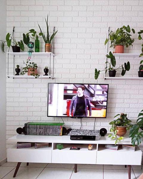 Sala de cliente Madesa decorada com plantas em prateleiras.